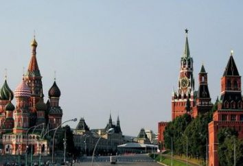Interessante on Vasilyevsky Spusk