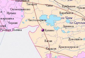 L'origine del lago Chany (regione di Novosibirsk)