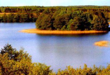 Crooked Lake: Rezerwat hydrologiczne na Białorusi, a małe miasteczko na Ukrainie