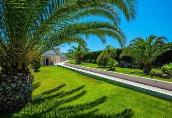 Hotel Anna Hotel 2 * (Hersonissos, Grecia) fotos y comentarios