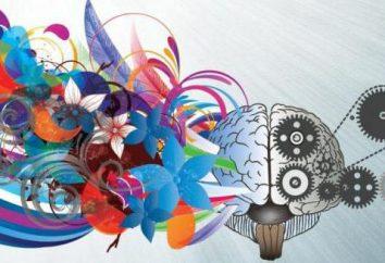 Comment développer l'imagination et la créativité: méthodes et recommandations efficaces