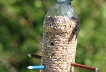 Rodzaje karmniki. Ręce zrobić domów dla ptaków