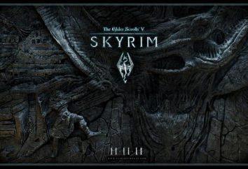 """""""Skyrim: Il Tempio del Cielo Harbor."""" Passaggio della location, consigli e trucchi"""