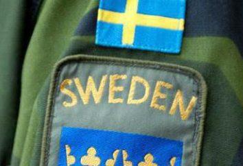 Esercito svedese dimensioni, attrezzature, foto