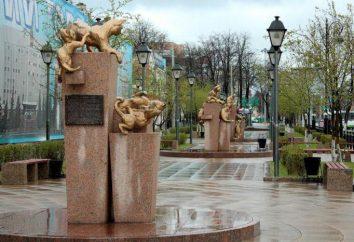 gatos Siberian quadrados – uma heróis acolhedor monumento cauda