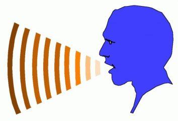 Lingüista – una rama de la lingüística … – Lingüística
