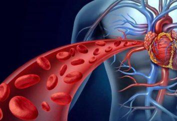 Rozszerzający naczynia krwionośne – co to jest? Opis grup farmakologicznych