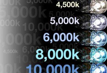 Xenon 6000K: Bewertungen