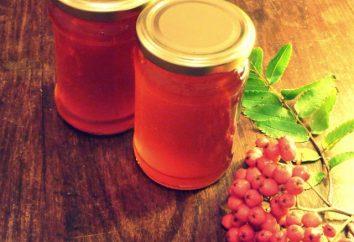 Raccolti per un utilizzo futuro: Marmellata di sorbo con le mele