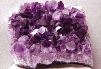 Kamienie Ryb jako znak zodiaku