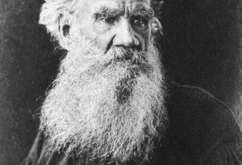 Le chemin de la vie Andreya Bolkonskogo. L. N. Tolstoï, « Guerre et Paix »