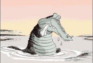 """In alcune situazioni è meglio usare verbali idioma """"lacrime di coccodrillo""""?"""