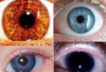 Il colore più raro di occhi – che cos'è?