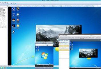La virtualisation des machines physiques VMware Workstation 10 de: Configuration