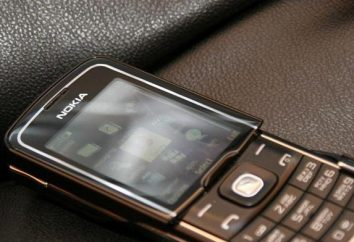 Nokia 8600 Luna: una visión general, las características, las revisiones de los propietarios