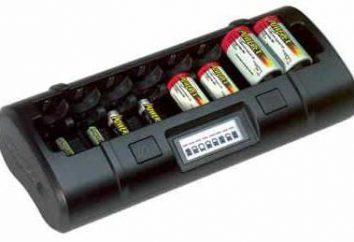 Ładowarka do akumulatorów: wydajność i funkcjonalność