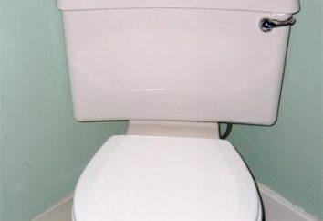 Jak wybrać toaletę rogiem?