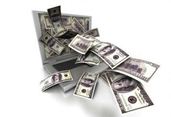 """Formación """"dinero en Internet"""": críticas"""