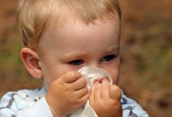 Humidificadores para recém-nascidos: comentários. Como escolher um umidificador para um recém-nascido