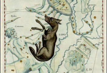Constellation Lupo: Dove è la lista di stelle