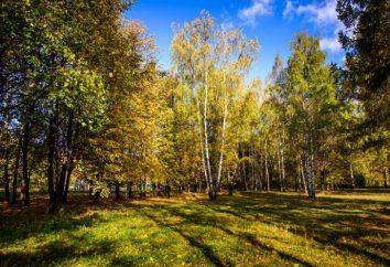 Natashinsky parque: descripción y fotos