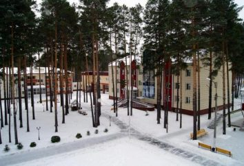 """""""Garofano rosso"""" – Sanatorium (Tyumen): descrizione e servizi"""