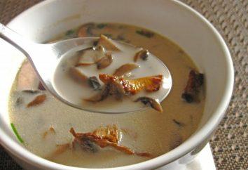 Scegli il tuo zuppa di ricetta con i funghi