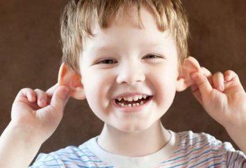 Krople z rur w uszach (dla dorosłych i dzieci): przegląd