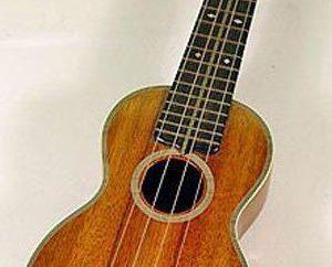 Szczegóły na temat jak wybrać ukulele