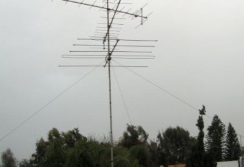 ¿Cuál es la frecuencia de los canales de TV