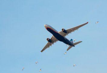 """biglietto ( """"Aeroflot"""") le norme e il pagamento di una multa Return"""
