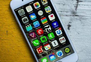 """¿Cuál es el costo en América """"iPhone 6""""? iPhone 6: revisión de precios"""