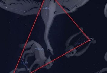 Constellation Cygnus: schemat. Historia konstelacji Łabędzia. Kiedy lepiej jest obserwować konstelacje