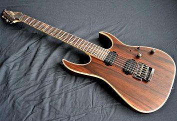 Guitarra Ibanez: história, particularmente