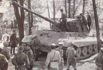 Sandomirskiy Brückenweichsel (1944)