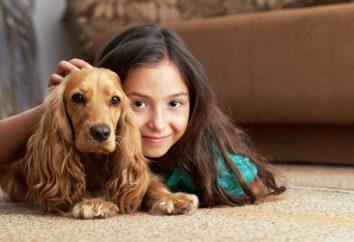 Animali e bambini. Animali domestici e la loro importanza nello sviluppo del bambino