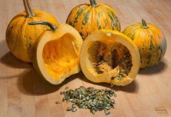gimnosperme zucca: recensioni, caratteristiche, la cura e la coltivazione
