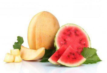 Frage zur Füllung: Cantaloupe – ist eine Beere oder Frucht?