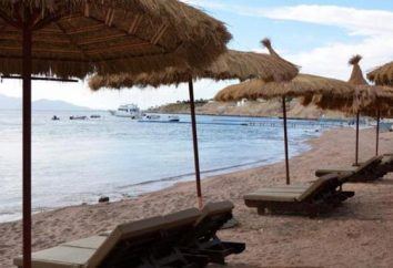 Three Corners Palmyra Resort 4 * (Egypte / Sharm El Sheikh): avis, photos