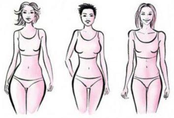Größe L – ist die Größe einer Frau in Zentimetern?