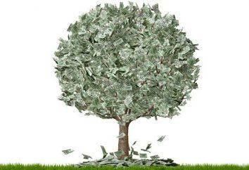 Jak zarobić dużo pieniędzy? Plan działania
