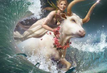 Znaki zodiaku. Zgodność Taurus i Lwy