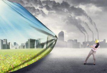 Die ökologisch sauberen Gebieten der Region Moskau: Fotos