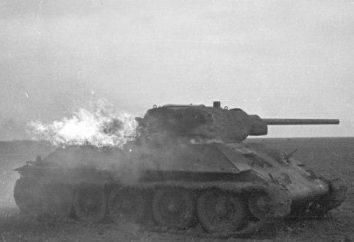 Page histoire de la Seconde Guerre mondiale: une bataille de chars de Senno, Juillet 1941