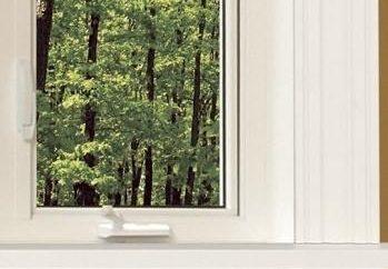 Jak wybrać ramki dla okien plastikowych?