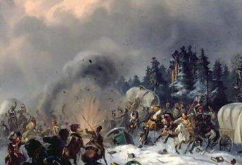 guerra russo-francesa (1812-1814)