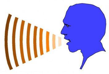 Fonologia – to … fonologia: definicja, przedmiot, cele i fundacje