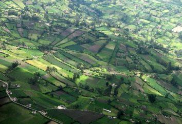 Private Landwirtschaft (LPH) Entschlüsselungsschlüsselkonzepte