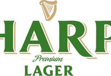 """Beer """"Harfe"""": die uralte Tradition als Hüterin"""