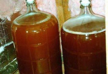 Cozinhar vinho caseiro de ameixa. recomendações receita